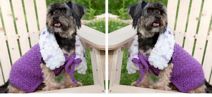 Purplelicious Crochet Dog Coat | thecrochetspace.com