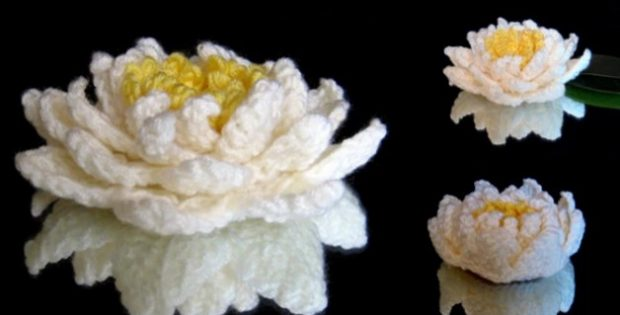 Amazing Crocheted Water Lily Free Crochet Pattern