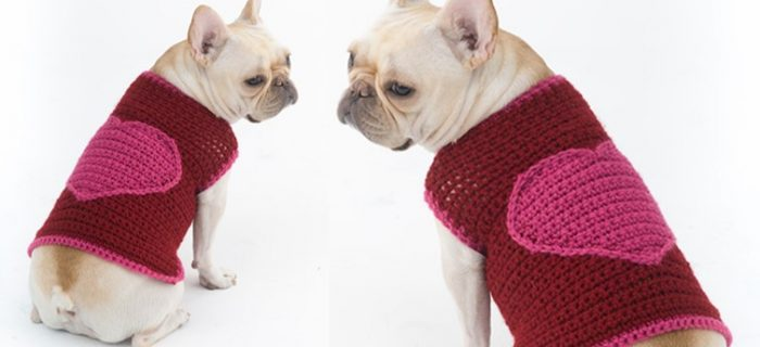 Romantic crocheted dog sweater | the crochet space