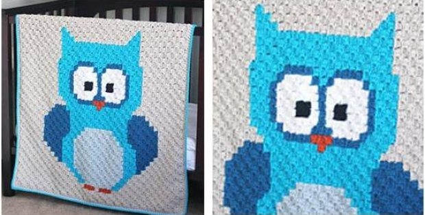 Baby Owl Crocheted Blanket Free Crochet Pattern