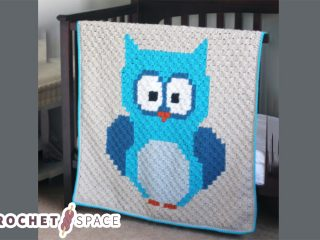 Baby Owl Crocheted Blanket || thecrochetspace.com