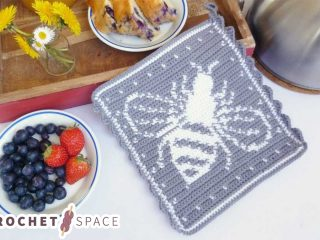 Crochet Bee Hot Pad || thecrochetspace.com