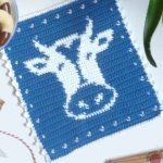 Crochet Cow Hot Pad. Crafted in blue and white with cow's head in center of hot pad. Added Picot Border || thecrochetspace.com