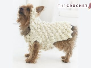 Crochet Puff Pooch Sweater || thecrochetspace.com