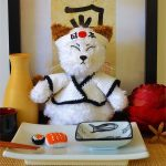 Crochet Super Sushi Cat. Sitting with plate of sushi food in front of him || thecrochetspace.com
