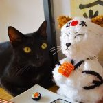 Crochet Super Sushi Cat. Sitting with a real black cat || thecrochetspace.com