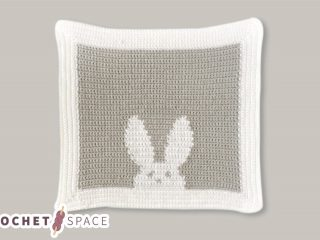Crocheted Bunny Baby Blanket || thecrochetspace.com