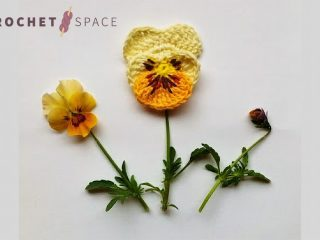 Delicate Crochet Pansy Flowers || thecrochetspace.com
