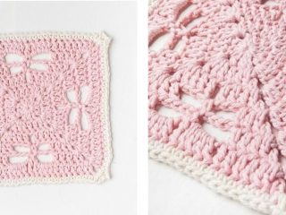 Dragonfly Delight Crochet Dishcloth | thecrochetspace.com