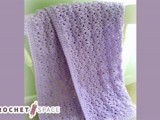 Lacy Crochet Baby Blanket    thecrochetspace.com