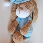 Sleepy Sonia Crochet Dog In Blue Soft Outfit And Hat || thecrochetspace.com